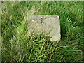 SE0236 : Trail marker stone No.5, Penistone Hill, Haworth by Humphrey Bolton