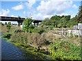 SE7810 : Pit of former A161 swingbridge by Christine Johnstone
