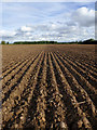 SK0916 : Ploughed field east of Handsacre, Staffordshire by Roger  Kidd
