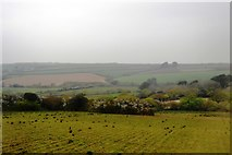 SW6239 : North of the Cornish Main Line by N Chadwick