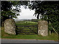 H3566 : Round stone gate pillars, Drumlish by Kenneth  Allen