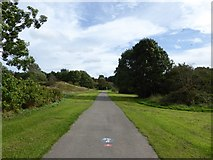SJ8748 : Cycleway on Central Forest Park by Jonathan Hutchins