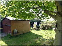 TQ1605 : Shed and Beehives in church of St Mary Churchyard by PAUL FARMER