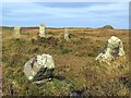 SW4335 : Nine Maidens (Boskednan) stone circle by Andrew Curtis