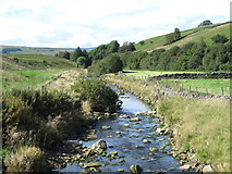 NY7346 : The River Nent, downstream of the bridge below Blagill by Mike Quinn