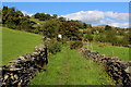 NY4103 : Walled Track ascending towards Troutbeck Village by Chris Heaton