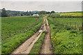 TQ1449 : North of Westcott by Ian Capper