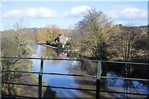 SU9947 : River Wey Navigation by N Chadwick