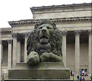 SJ3490 : Lion outside St George's Hall, Liverpool by Mat Fascione