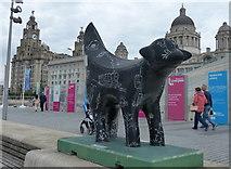 SJ3390 : Superlambanana outside the Museum of Liverpool by Mat Fascione