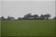 SW7844 : Cornish farmland by N Chadwick