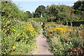 SJ5483 : The Walled Garden at Norton Priory by Jeff Buck