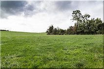 R7582 : Field west of minor lane by David P Howard