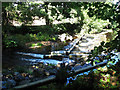 SX8288 : Weir on the Teign above Sowton Mill by Stephen Craven