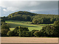 SO4420 : Wooded hill from B4521 by Trevor Littlewood