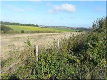 TR2954 : Looking northwest from Thornton Lane by John Baker