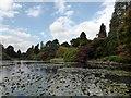 TQ4124 : Ten Foot Pond, Sheffield Park by PAUL FARMER