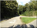 TM1491 : Hall Road, Bunwell Hill by Geographer