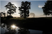 SO8844 : Croome Park at dawn by Philip Halling