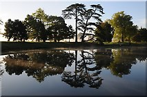 SO8844 : Trees reflected in the lake at Croome by Philip Halling