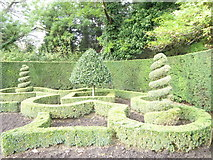 TQ2882 : Ornamental shrubbery in Queen Mary's Gardens Regent's Park by Rod Allday