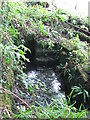 SD6031 : Marsden Holy Well by Andy Davis