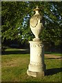 SO8844 : Robert Adam urn, Croome Park by Philip Halling