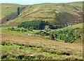 SN8275 : Esgair-Wen, the house nestling in the Ystwyth valley by Derek Voller