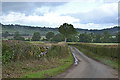 NY5221 : Minor road near Whale by Nigel Brown