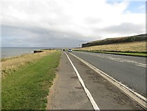 NZ4064 : Alongside the A183, Coast Road by Graham Robson