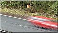 J1661 : Motorway telephone, Moira (October 2016) by Albert Bridge