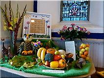 H4472 : Trinity Presbyterian Church, Omagh - Harvest Hymn Display (3) by Kenneth  Allen