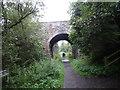 NY9623 : Tees Valley Railway Walking Trail by Les Hull