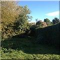 SP7433 : Paths around Thornborough by Dave Thompson