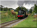 SD8021 : NOT The Flying Scotsman by David Dixon