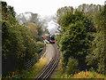 SD7915 : East Lancashire Railway near Summerseat by David Dixon