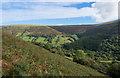 SO2532 : Bracken slope above upper valley of Afon Honddu by Trevor Littlewood