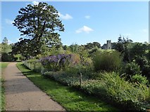 SO8845 : The Evergreen Shrubbery, Croome Park by Philip Halling