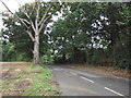 TM4077 : Beccles Road (B1124), Holton by JThomas