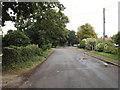 TM1686 : School Road, Tivetshall St.Margaret by Geographer