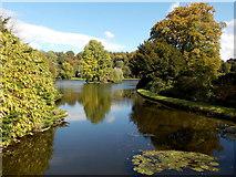 ST7733 : Stourton: across Stourhead lake from the Iron Bridge by Chris Downer
