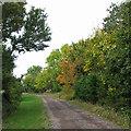 TL4473 : Aldreth: Stocking Lane by John Sutton
