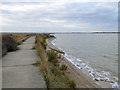 TM0209 : Sea wall north of Sales Point, Bradwell by Robin Webster