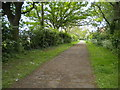 TL1595 : Footpath, Orton Brimbles (1) by Richard Vince