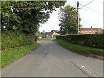 TM1093 : Greenways Lane, Carleton Rode by Adrian Cable