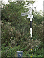 TM1093 : Signpost on Hall Road by Adrian Cable