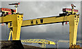 J3575 : Samson and Goliath, Belfast (October 2016) by Albert Bridge