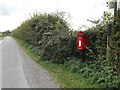 TM0893 : Abbey Road & Woodhall Farm Postbox by Adrian Cable