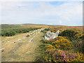 SX7577 : Haytor Granite Tramway by Des Blenkinsopp