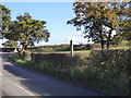 SJ7952 : Footpath signpost in hedge on Alsager Road by Jonathan Hutchins